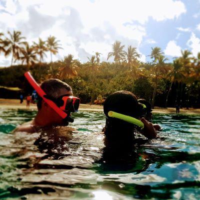Snorkeling in the British Virgin Islands